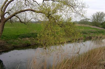 Thames Downstream of Crickslade